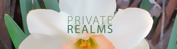 Private Realms